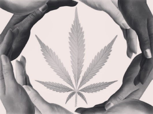 Equity in Cannabis: There is Work to be Done